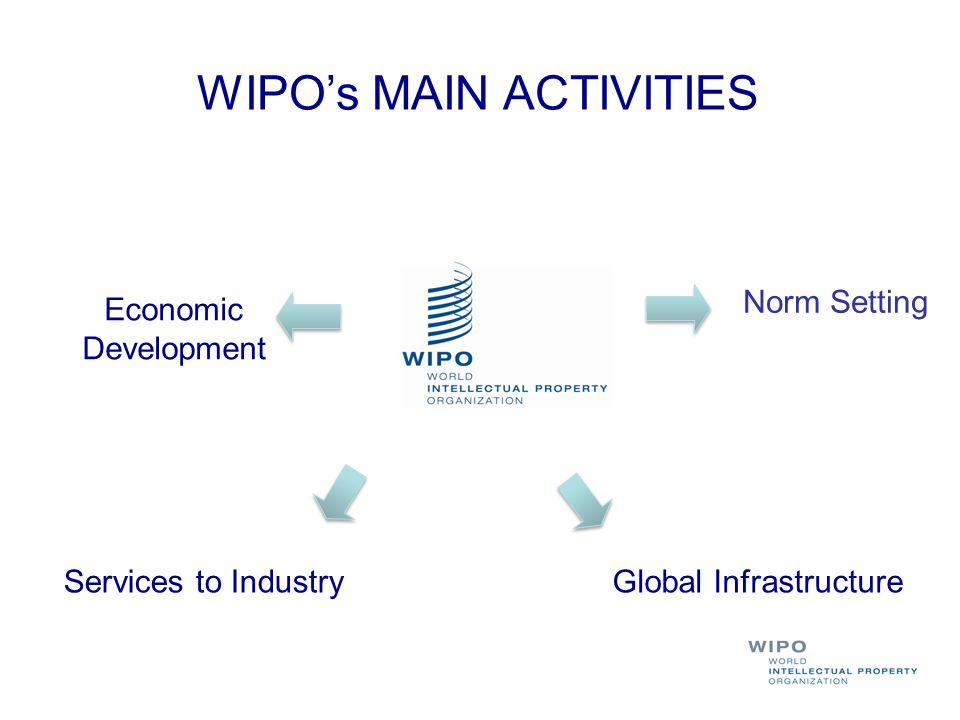 WIPO's MAIN ACTIVITIES