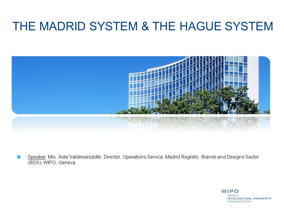 THE MADRID SYSTEM & THE HAGUE SYSTEM