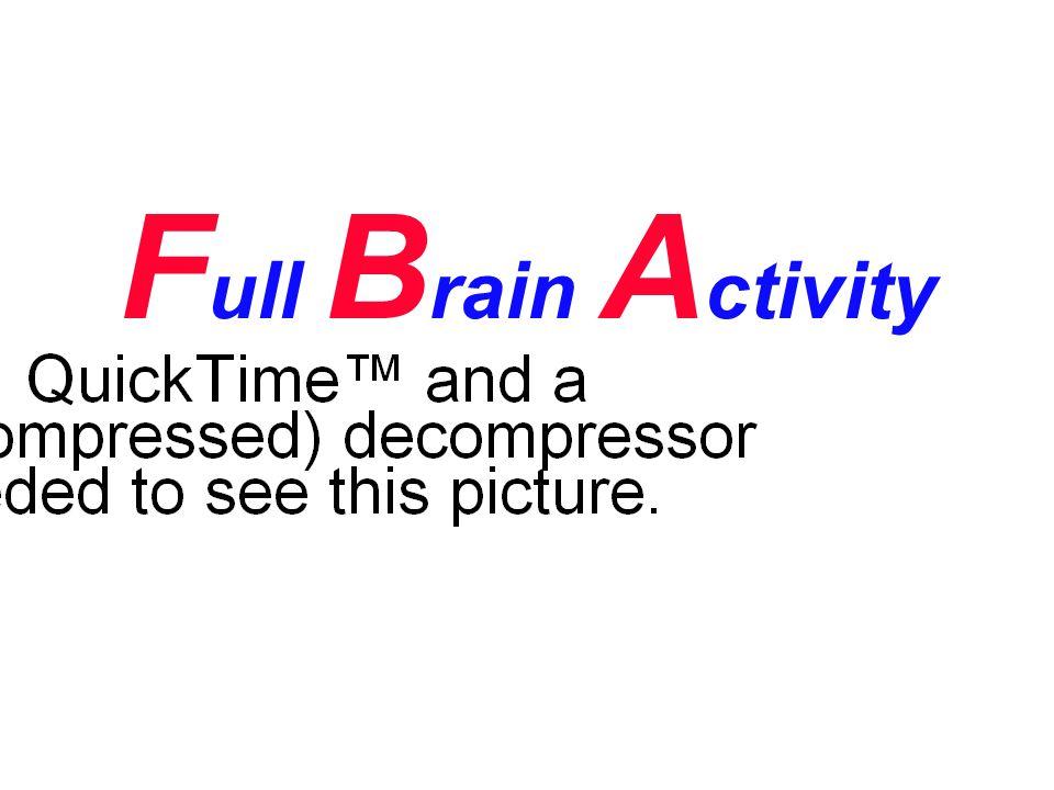 Full Brain Activity