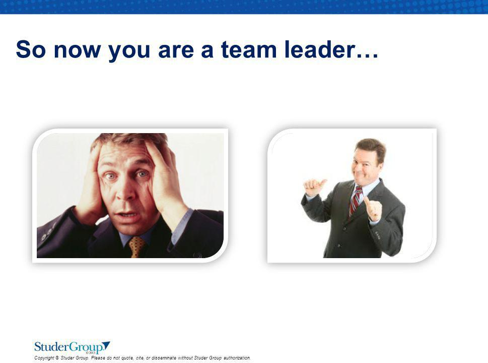 So now you are a team leader…
