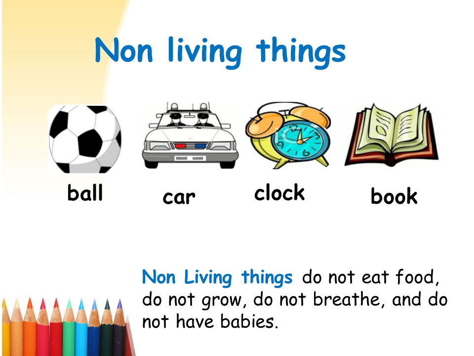 Non living things ball car clock book