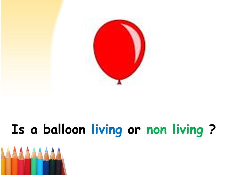 Is a balloon living or non living