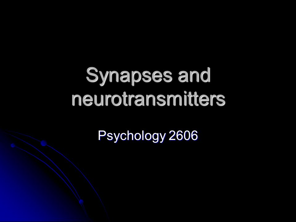 Synapses and neurotransmitters
