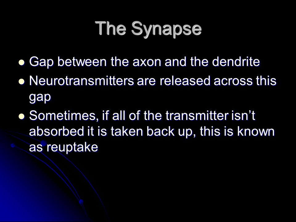 The Synapse Gap between the axon and the dendrite