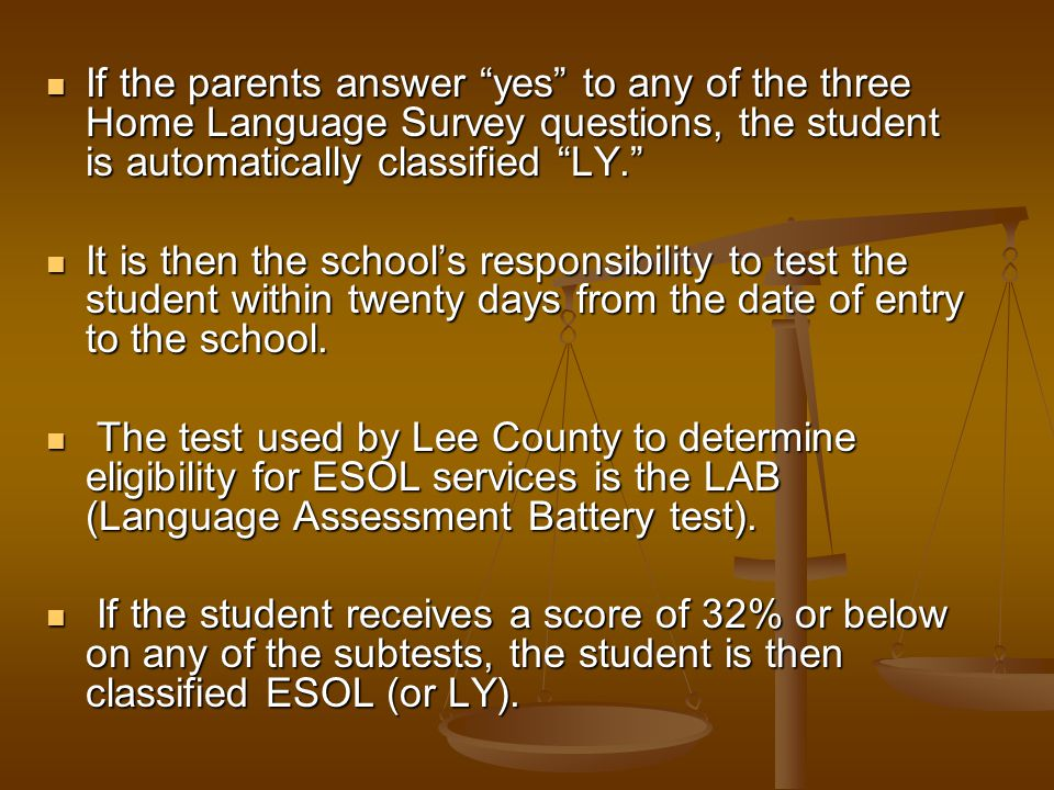 If the parents answer yes to any of the three Home Language Survey questions, the student is automatically classified LY.