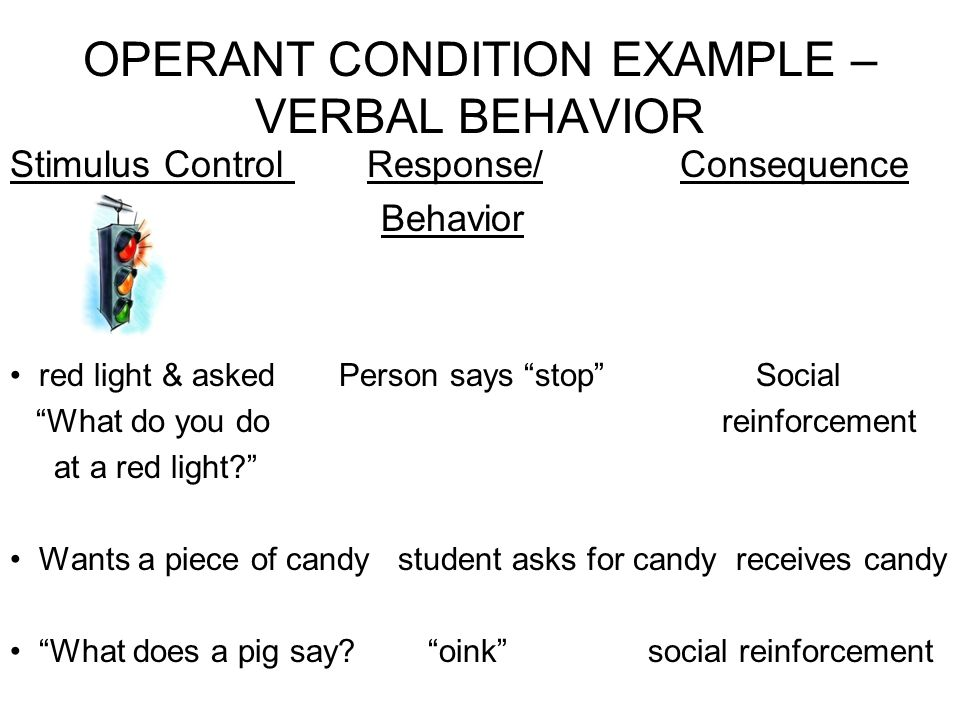 OPERANT CONDITION EXAMPLE – VERBAL BEHAVIOR