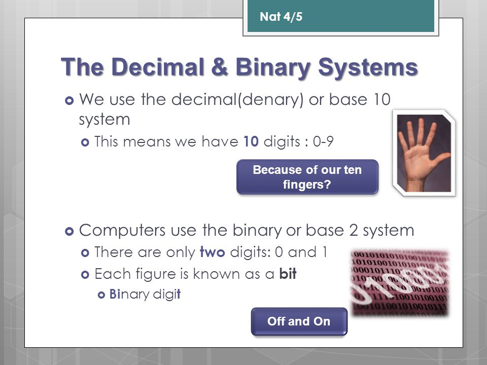 The Decimal & Binary Systems