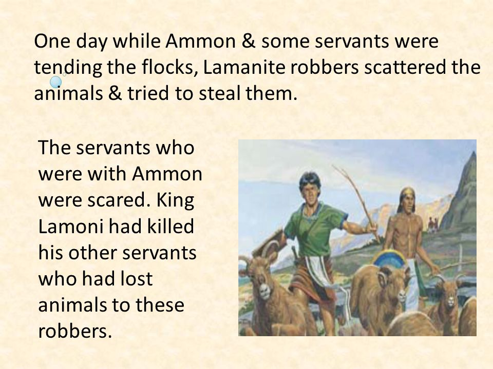 One day while Ammon & some servants were tending the flocks, Lamanite robbers scattered the animals & tried to steal them.