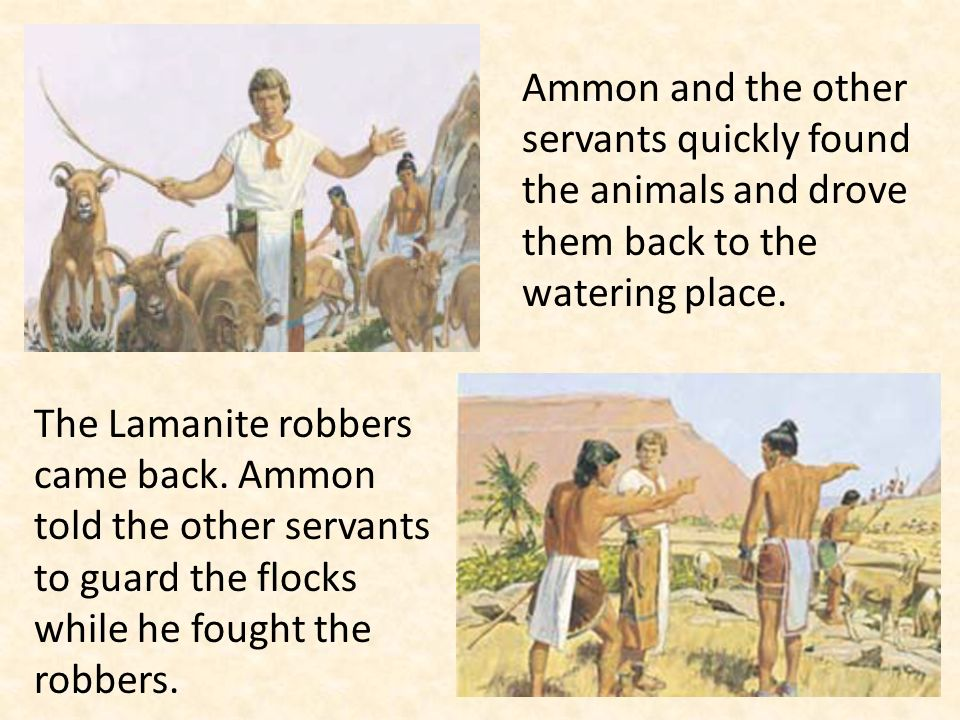 Ammon and the other servants quickly found the animals and drove them back to the watering place.