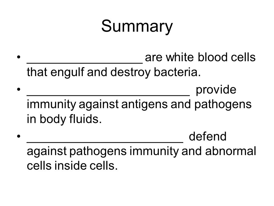 Summary _________________ are white blood cells that engulf and destroy bacteria.