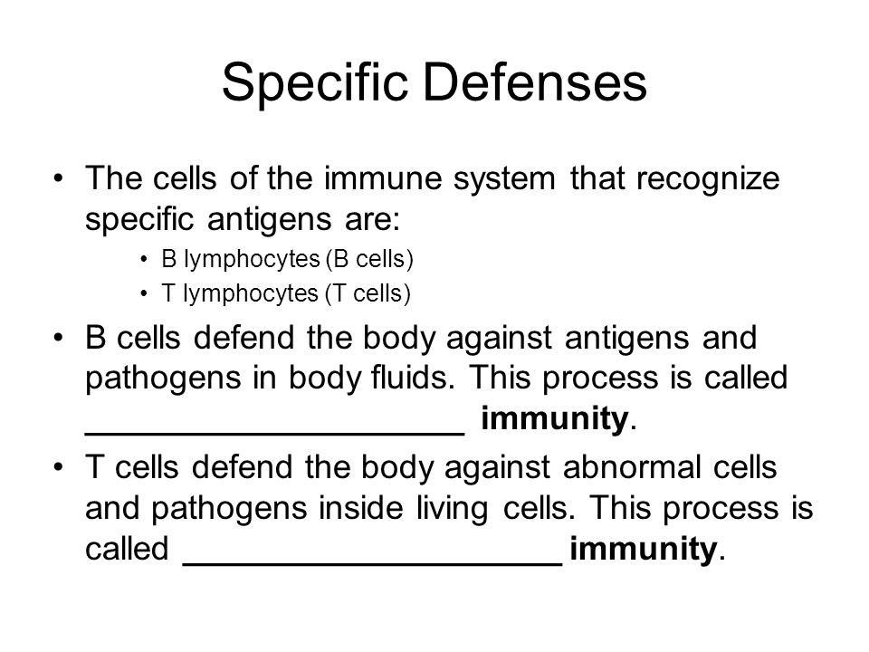Specific Defenses The cells of the immune system that recognize specific antigens are: B lymphocytes (B cells)