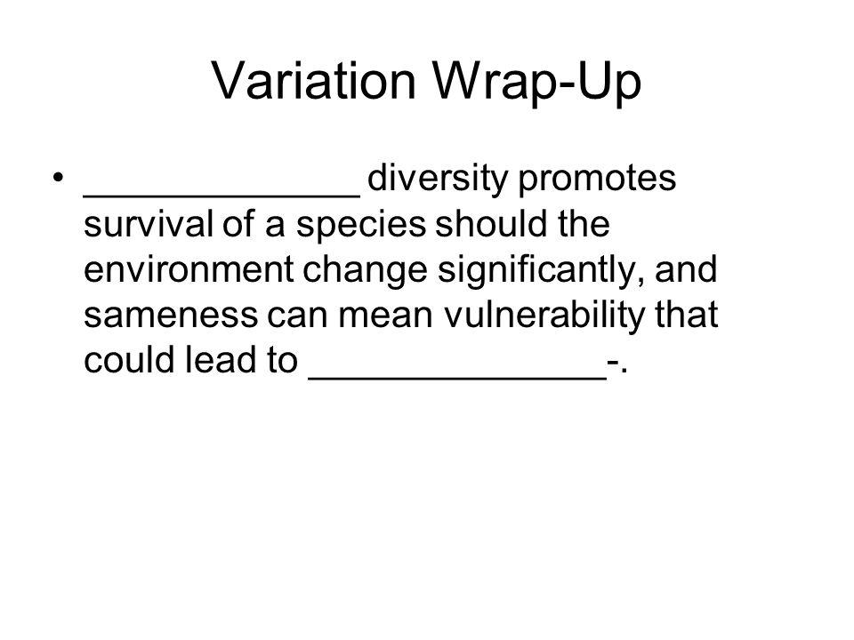 Variation Wrap-Up