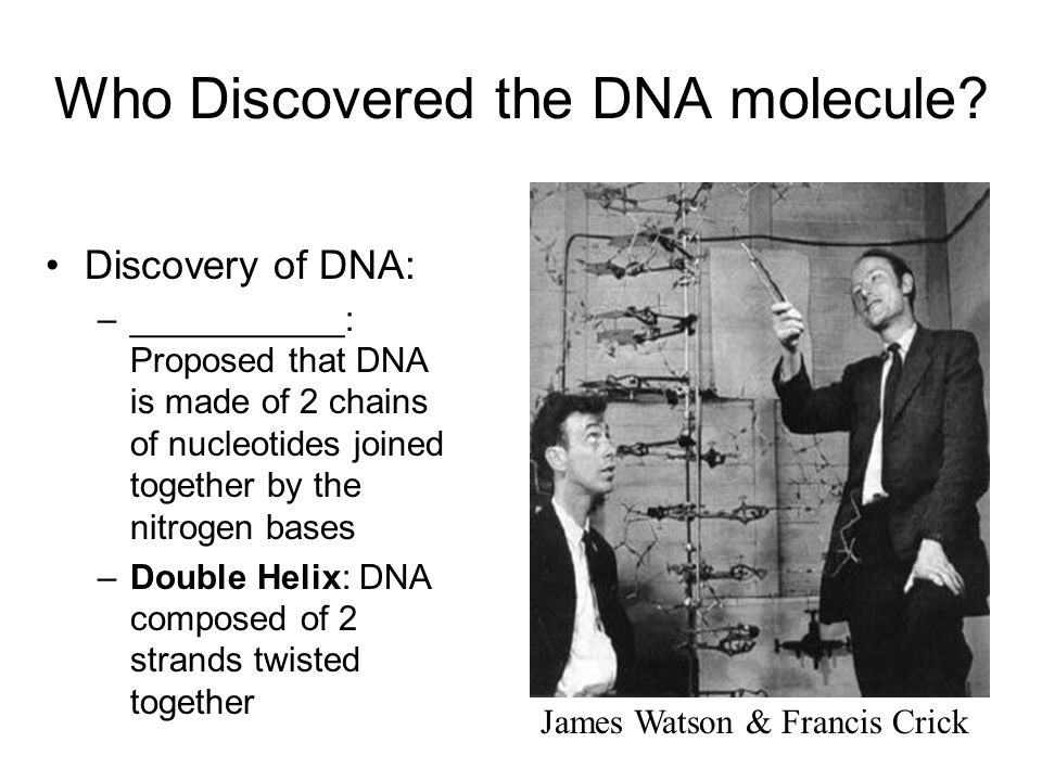 who discovered dna Mendel helped establish that heredity was controlled by factors and chromosomes were soon suspected of carrying the factors (genes) discover scientific proof that dna is the genetic material by following the story below the story of dna's discovery is outlined by the folks at access excellence.