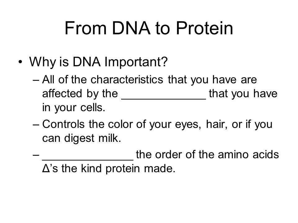 From DNA to Protein Why is DNA Important