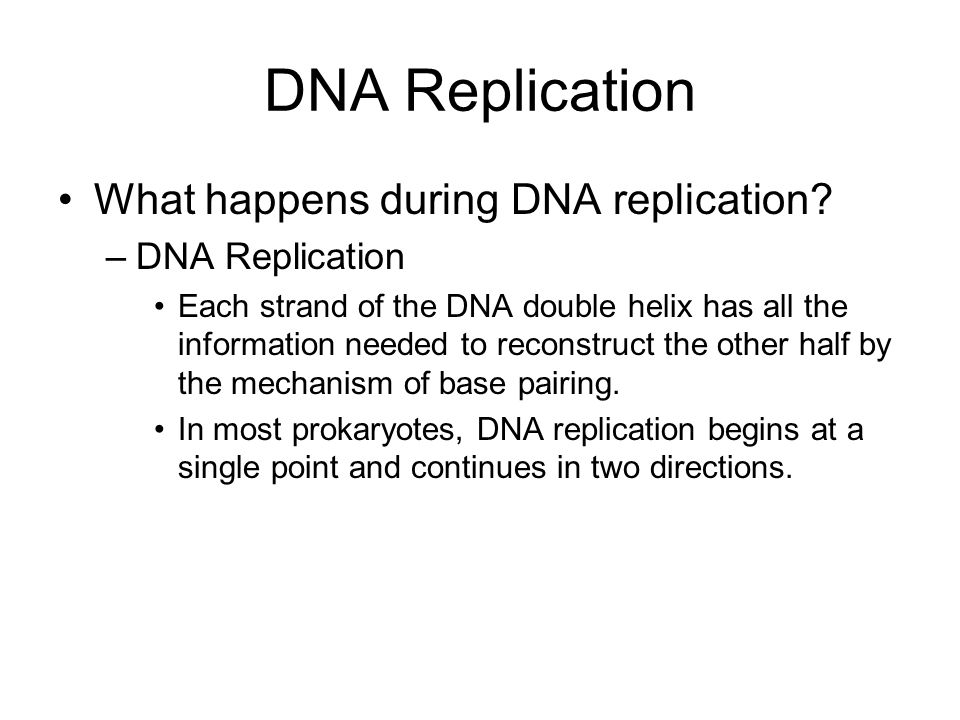 DNA Replication What happens during DNA replication DNA Replication