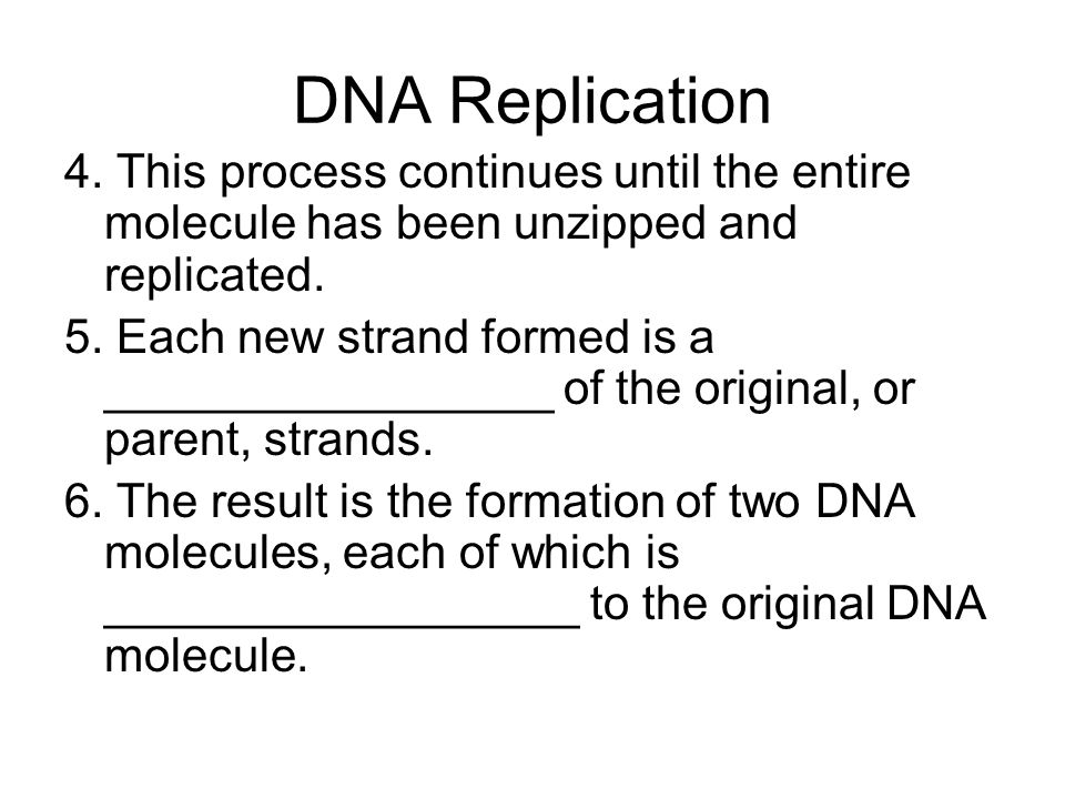 DNA Replication 4. This process continues until the entire molecule has been unzipped and replicated.