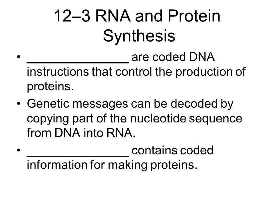 12–3 RNA and Protein Synthesis