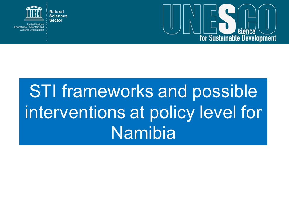 STI frameworks and possible interventions at policy level for Namibia