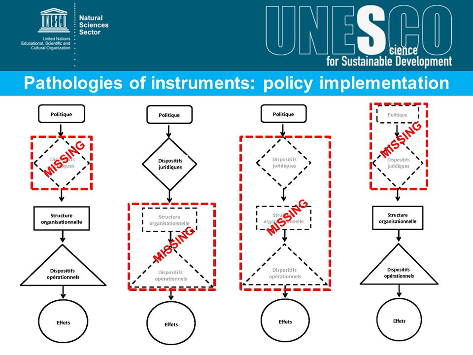 Pathologies of instruments: policy implementation failures