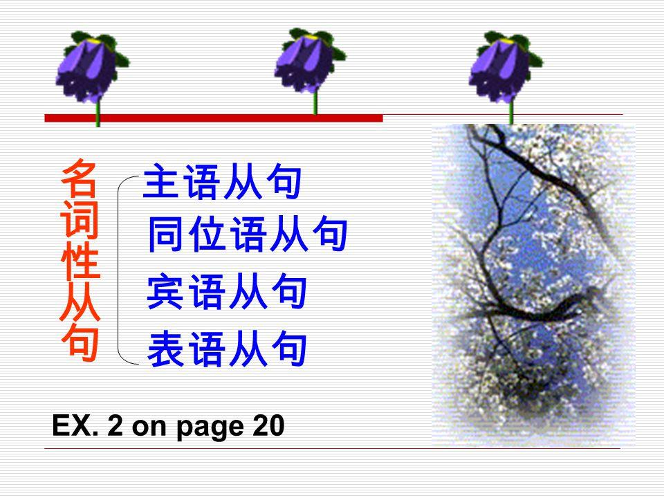 主语从句 名词性从句 同位语从句 宾语从句 表语从句 EX. 2 on page 20