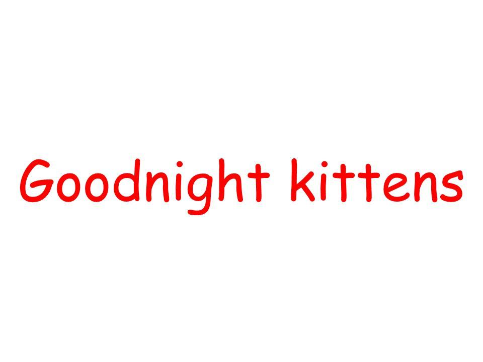 Goodnight kittens By using Slide Show Custom Slide Show ,