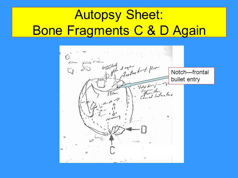 Autopsy Sheet: Bone Fragments C & D Again