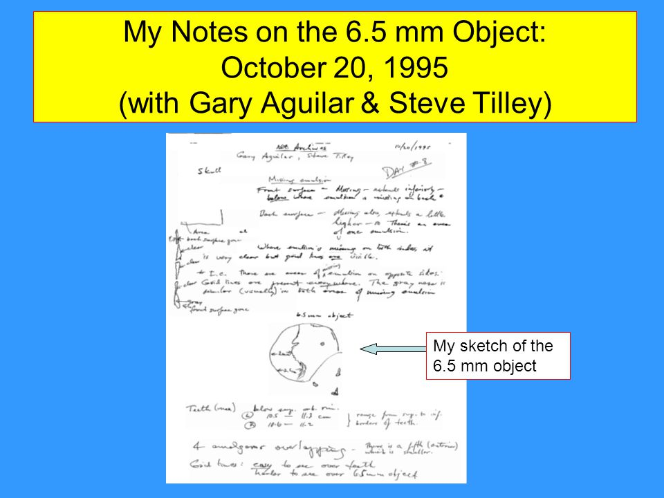 My Notes on the 6.5 mm Object: October 20, 1995 (with Gary Aguilar & Steve Tilley)
