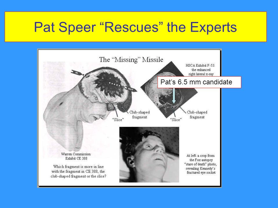 Pat Speer Rescues the Experts