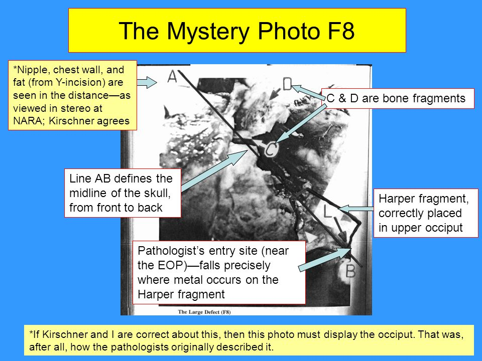 The Mystery Photo F8 C & D are bone fragments