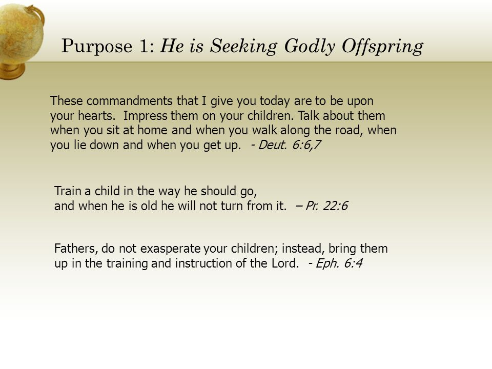 Purpose 1: He is Seeking Godly Offspring