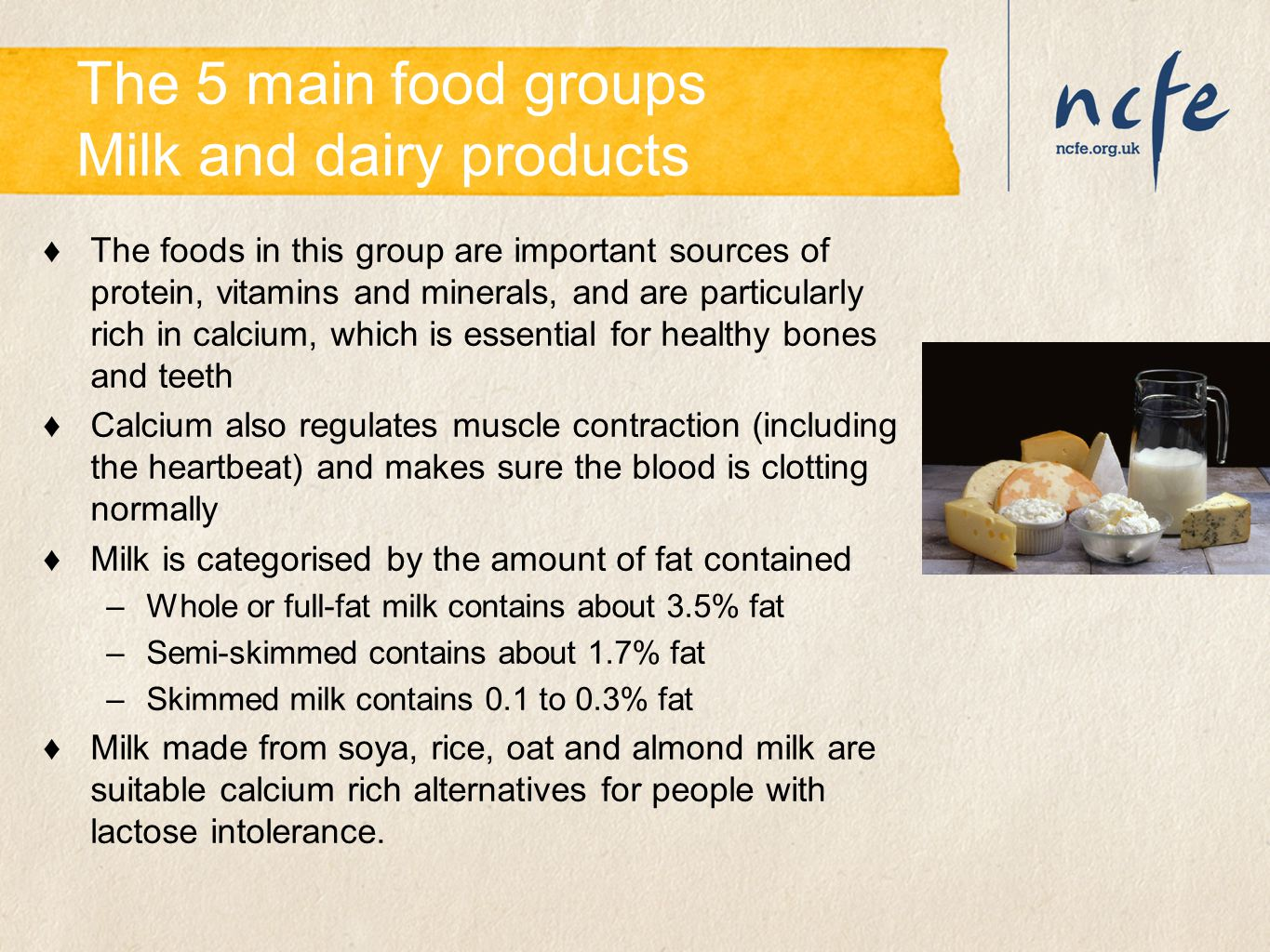 The 5 main food groups Milk and dairy products