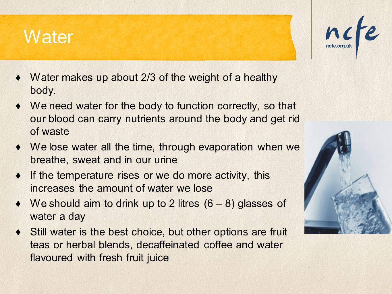 Water Water makes up about 2/3 of the weight of a healthy body.