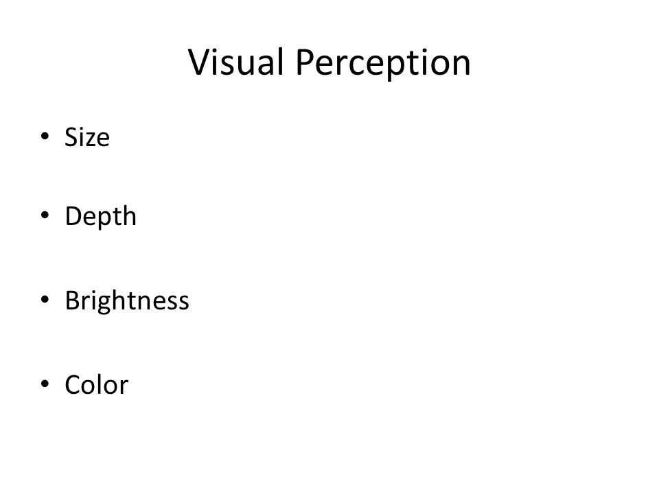 Visual Perception Size Depth Brightness Color