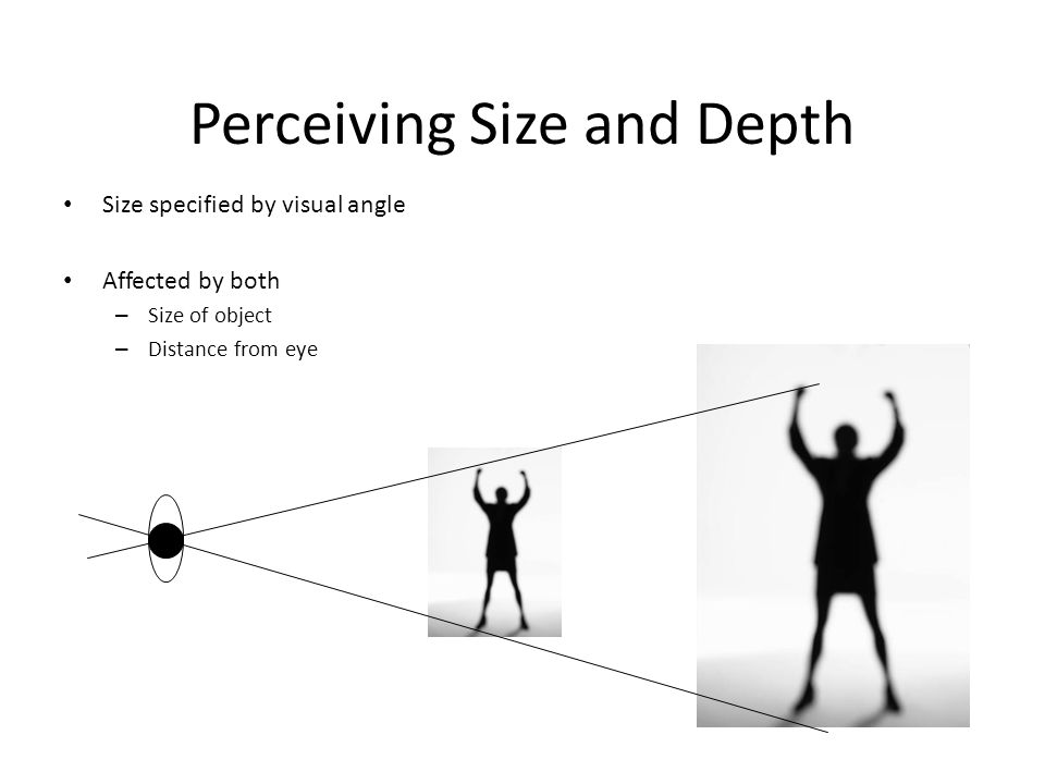 Perceiving Size and Depth