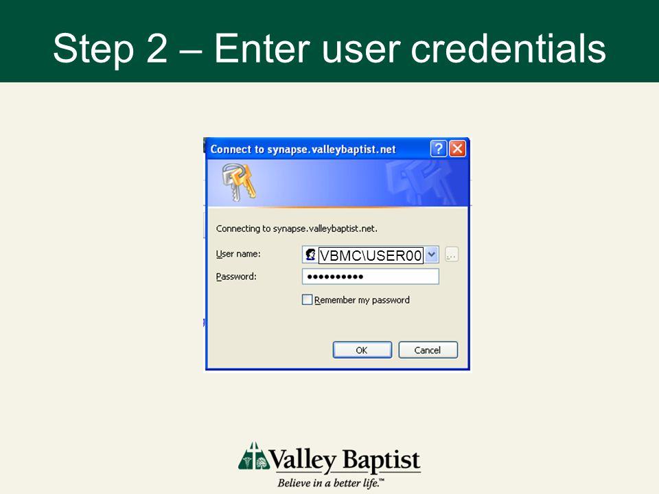 Step 2 – Enter user credentials