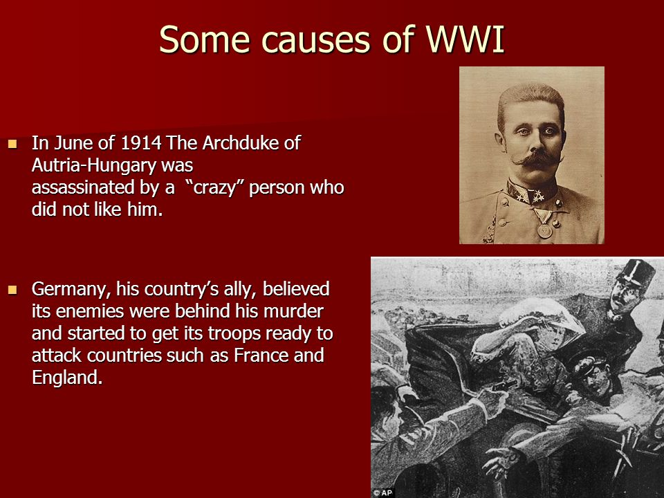 Some causes of WWIIn June of 1914 The Archduke of Autria-Hungary was assassinated by a crazy person who did not like him.