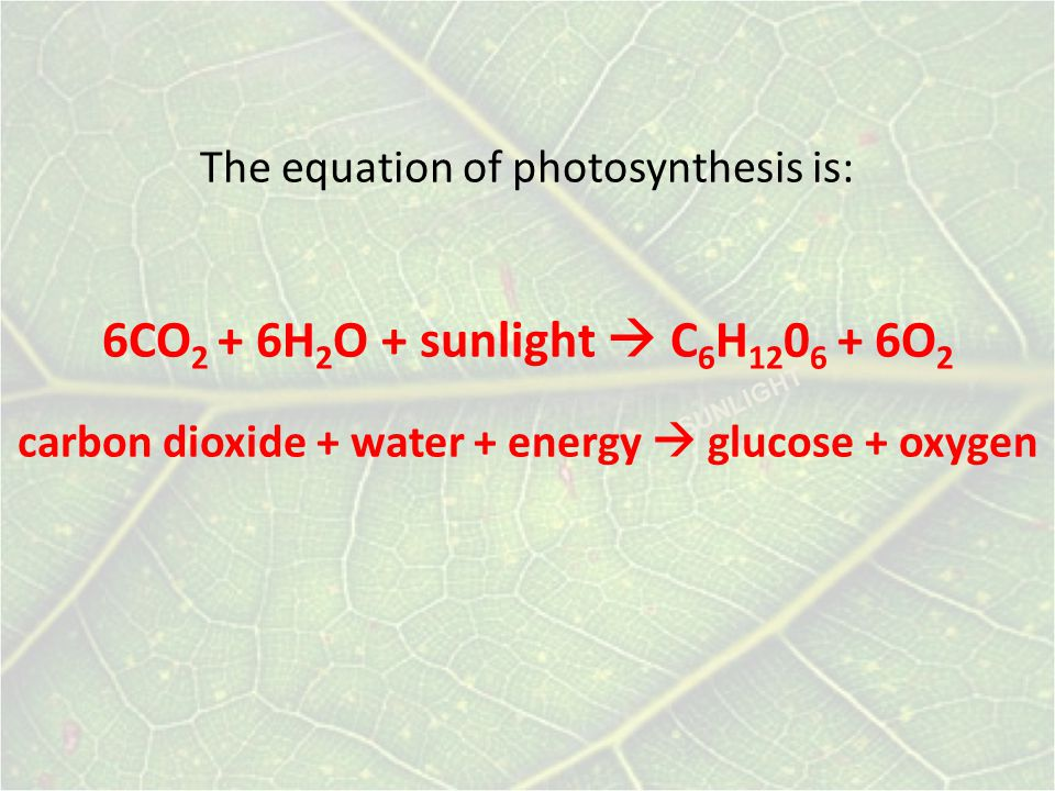 The equation of photosynthesis is:
