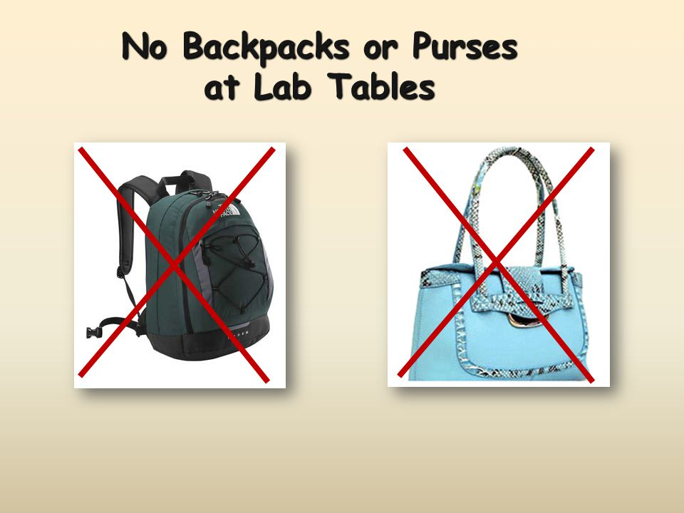 No Backpacks or Purses at Lab Tables