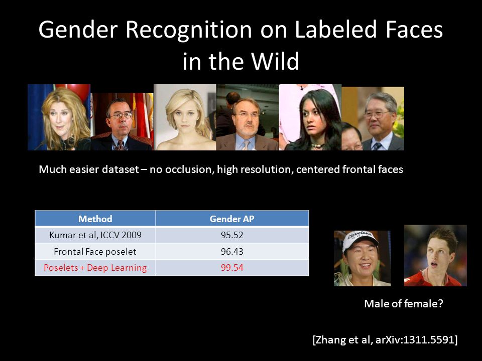 Gender Recognition on Labeled Faces in the Wild
