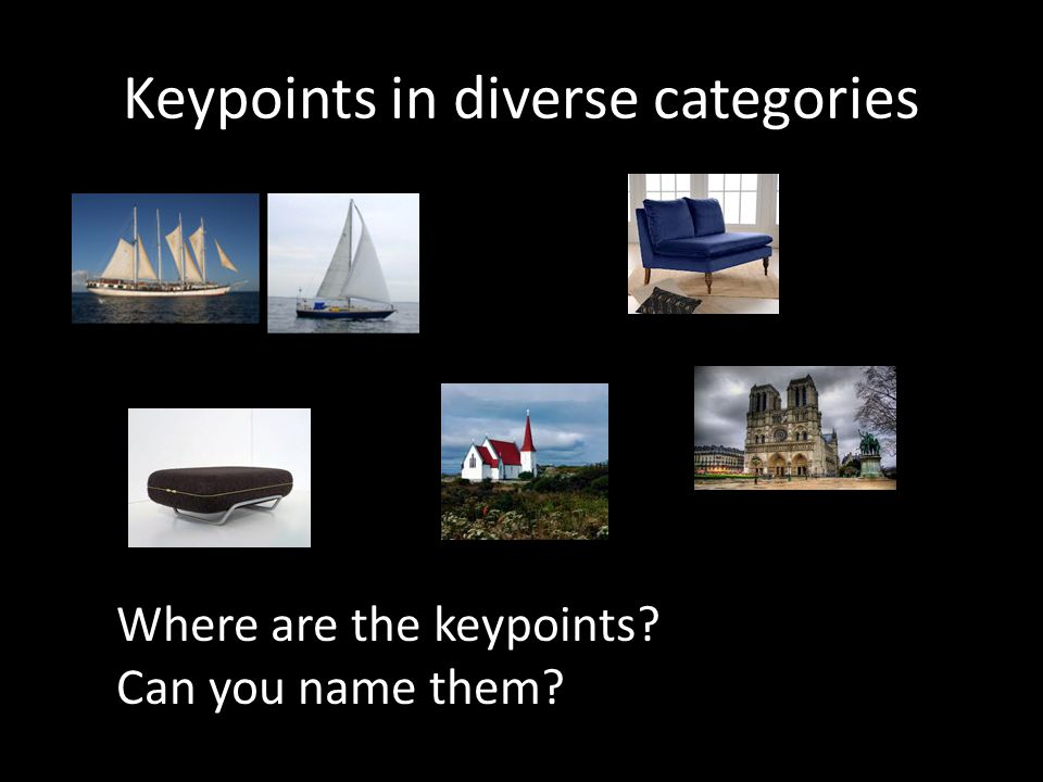 Keypoints in diverse categories