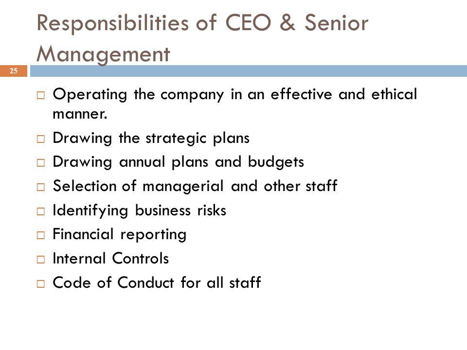Responsibilities of CEO & Senior Management