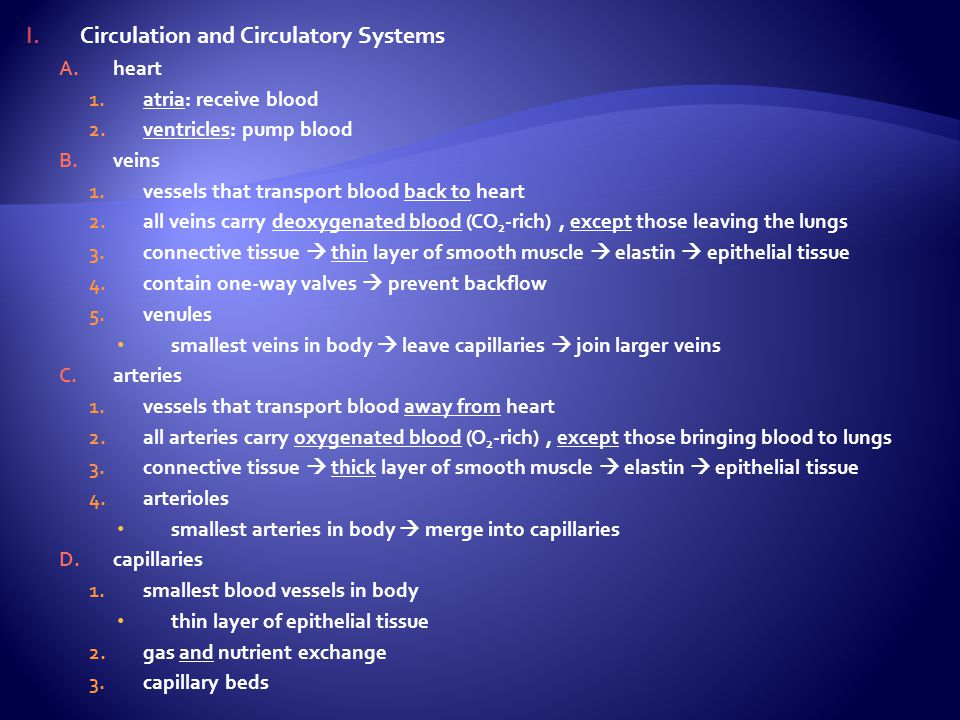 Circulation and Circulatory Systems