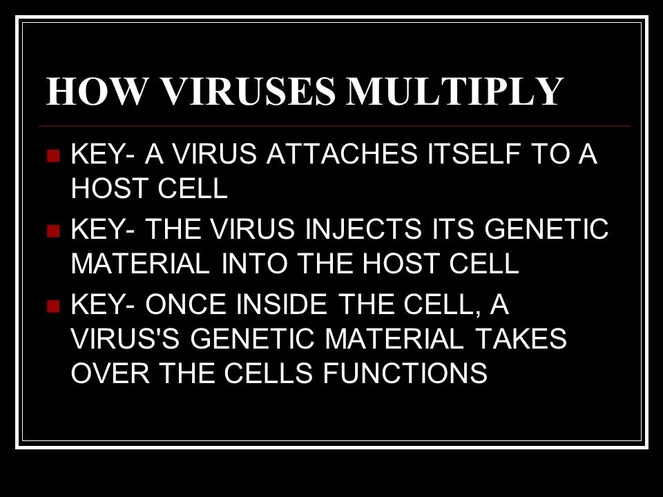 HOW VIRUSES MULTIPLY KEY- A VIRUS ATTACHES ITSELF TO A HOST CELL