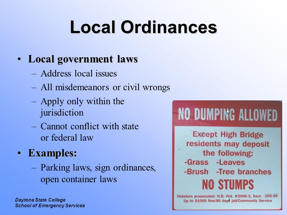 Local Ordinances Local government laws Examples: Address local issues
