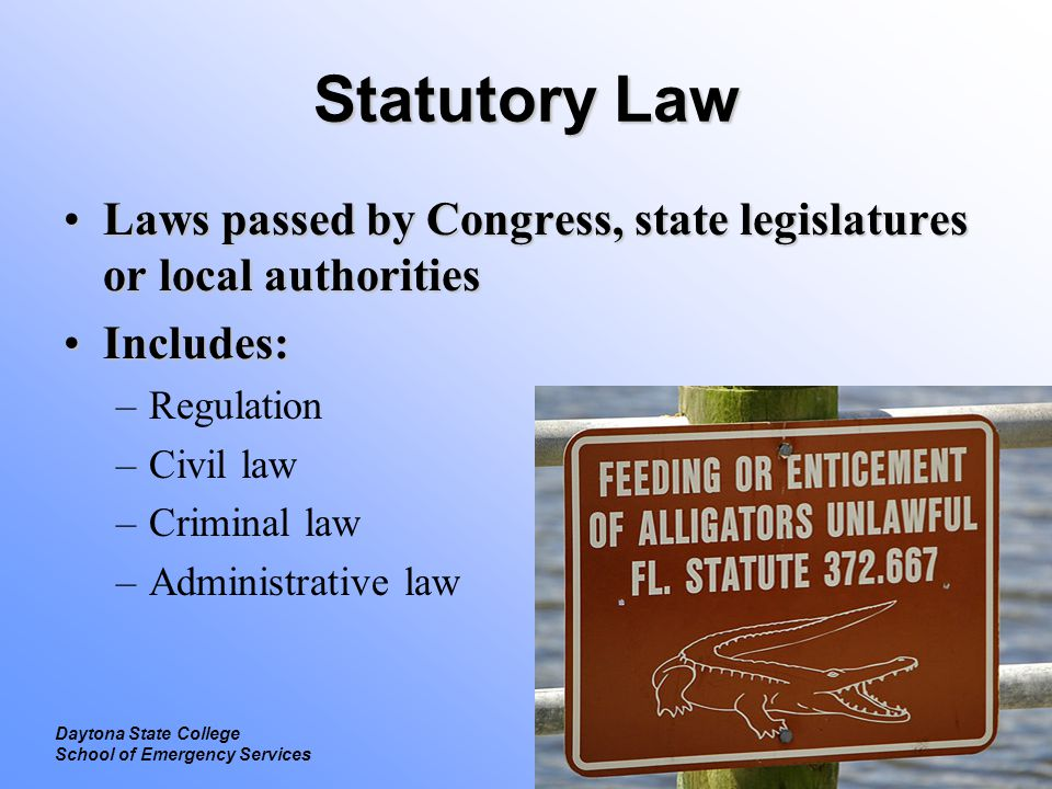 Statutory Law Laws passed by Congress, state legislatures or local authorities. Includes: Regulation.