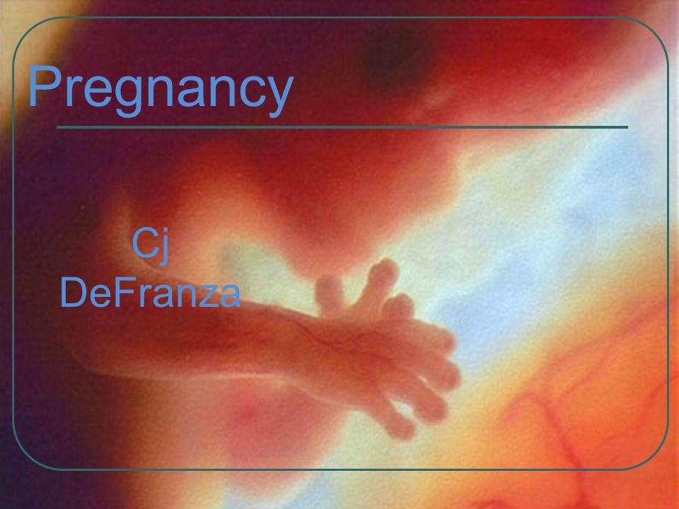 Pregnancy Cj DeFranza