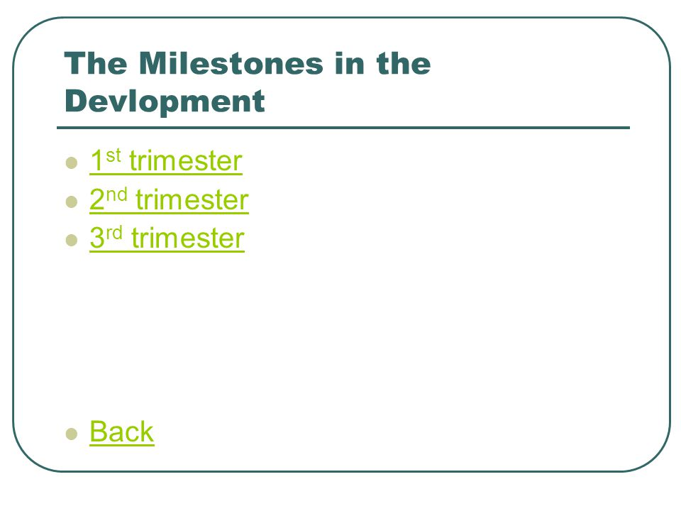 The Milestones in the Devlopment