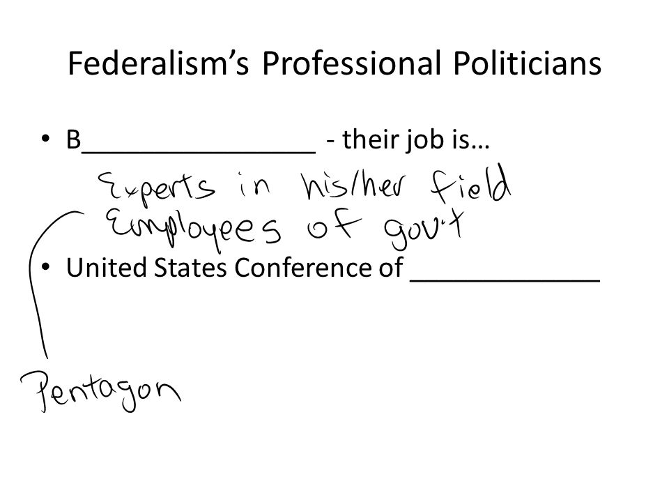 Federalism's Professional Politicians