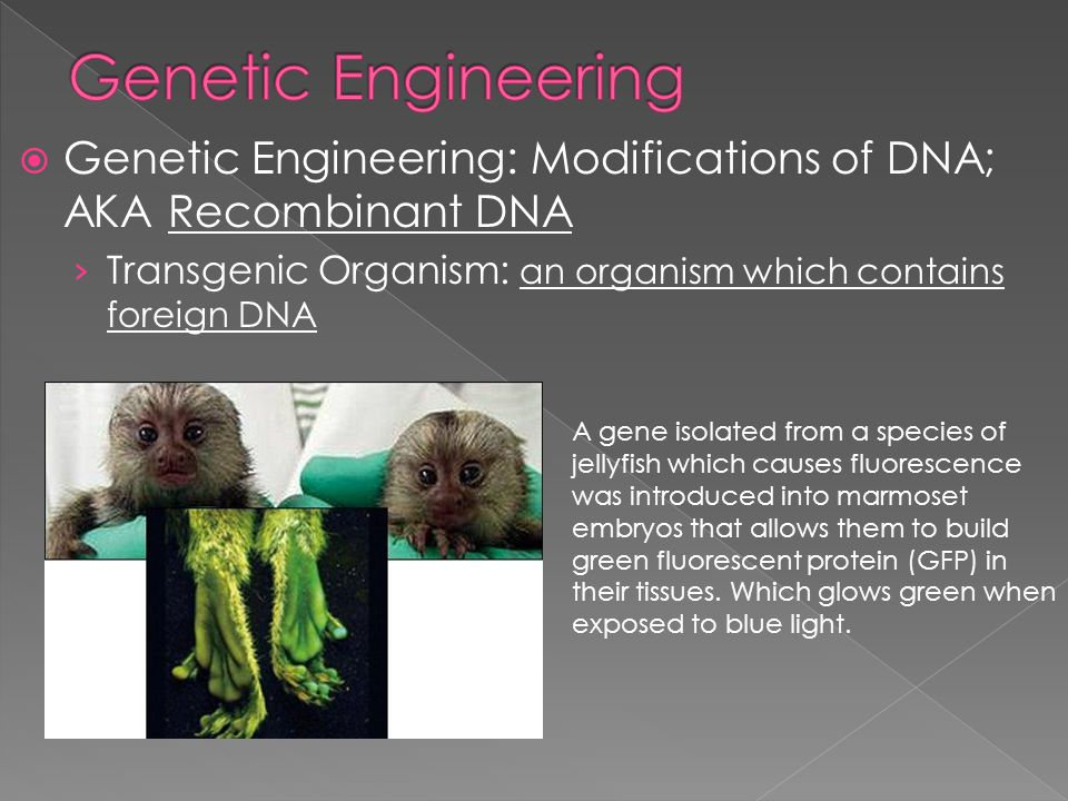 Genetic Engineering Genetic Engineering: Modifications of DNA; AKA Recombinant DNA. Transgenic Organism: an organism which contains foreign DNA.