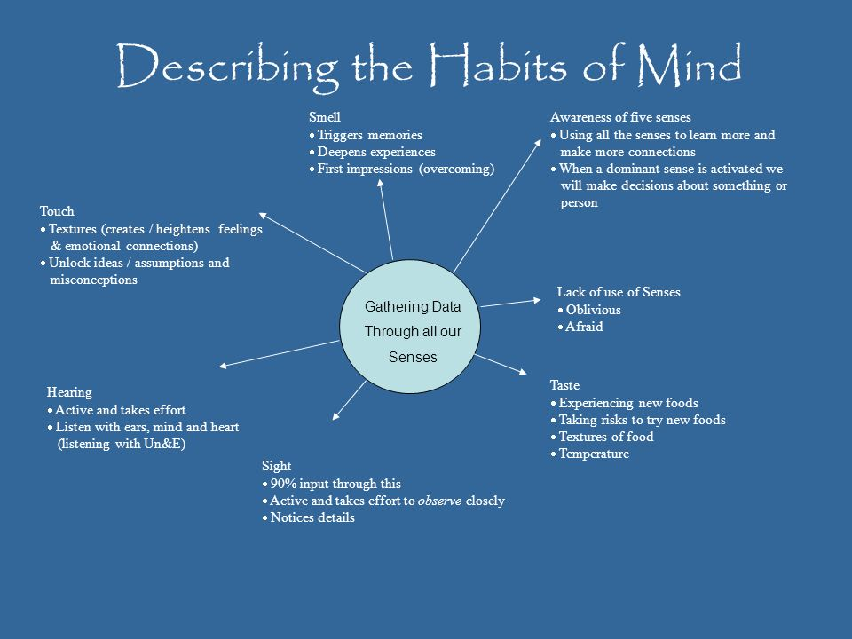 Describing the Habits of Mind